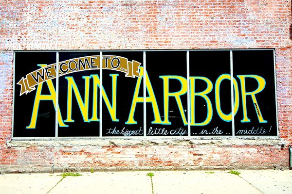 Ann Arbor Photo 1
