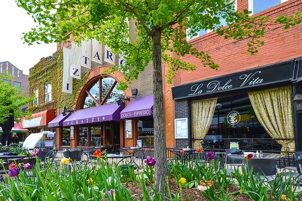 Ann Arbor Photo 5