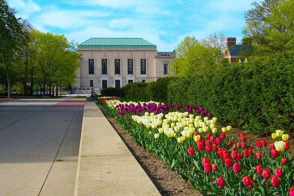 Ann Arbor Photo 36