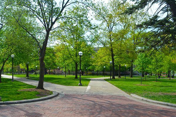 Ann Arbor Photo 42