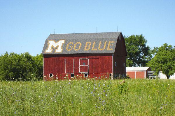 Ann Arbor Photo 43