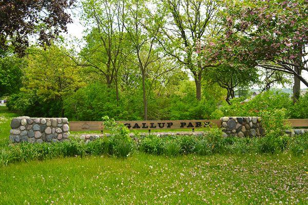 Ann Arbor Photo 49