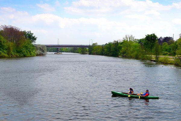 Ann Arbor Photo 51