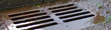 7 Signs You May Have a Drainage Problem