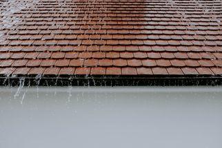 Gutters & Roofers