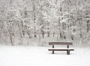 Tips and Tricks for Michigan Winters