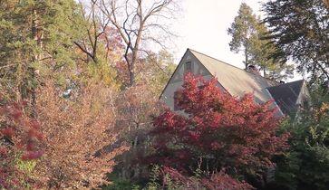 Ann Arbor Hills and Geddes Heights