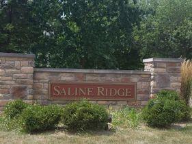 Saline Ridge