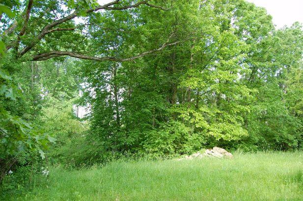 2323 Weber Drive - Photo 2