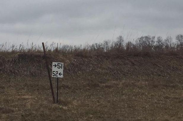 7006 Jolyn Drive - Photo 4