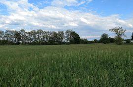 0 #7 Creek Drive Grass Lake, MI 49240 Photo 1