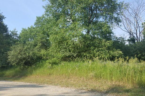 10505 Rolling Oaks Drive - Photo 2