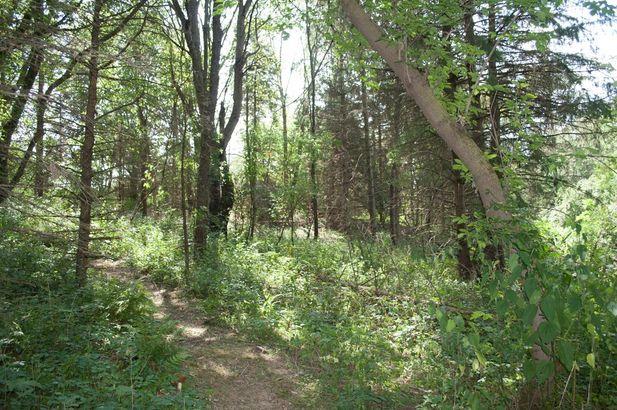 7426 Quail Ridge Drive Dexter MI 48130