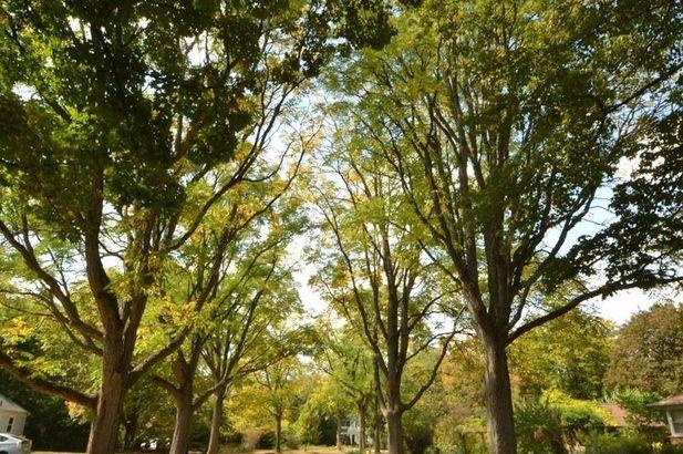1610 Cherokee Road - Photo 51