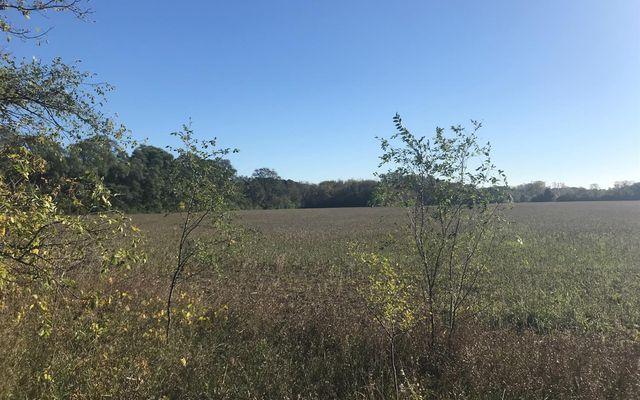7707 Stony Creek Road - photo 1