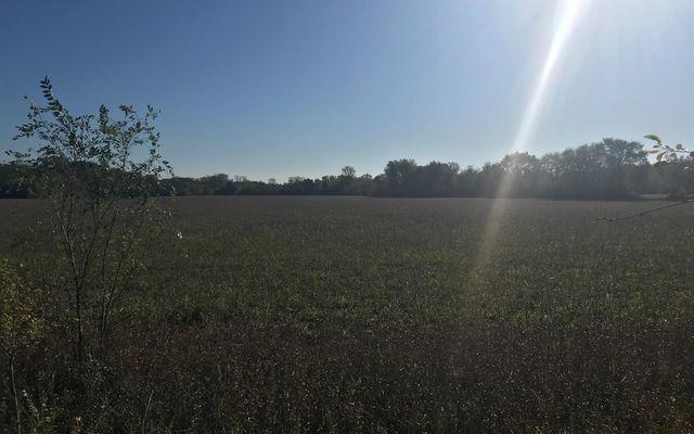 7707 Stony Creek Road - photo 3