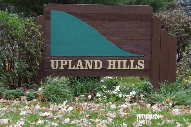 829 Upland Hills Drive - Photo 18