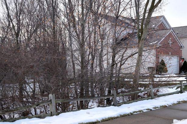 9874 High Meadow Drive - Photo 23