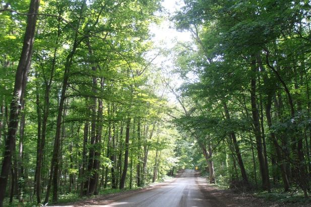 7435 N Ridge Road - Photo 2