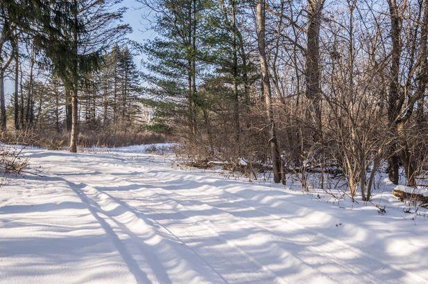 7435 N Ridge Road - Photo 47