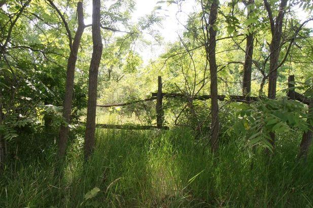 7435 N Ridge Road - Photo 61