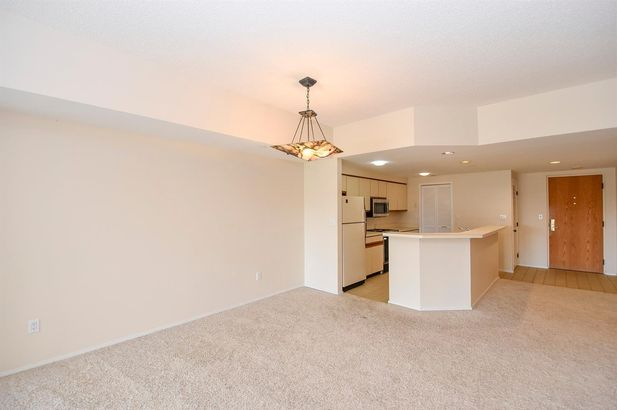 505 East Huron Street #703 - Photo 7