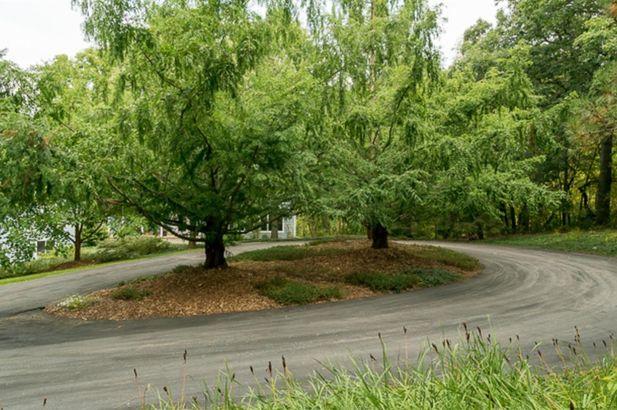 7250 Park Lake Drive - Photo 78