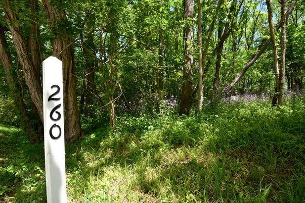 260 Barton North Drive Ann Arbor MI 48105
