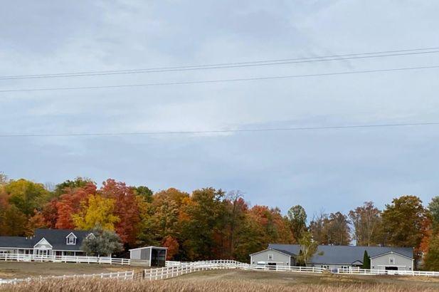 1300 E Monroe Road - Photo 5