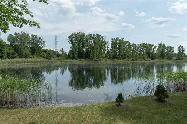 10250 Swan Lake Circle - Photo 5