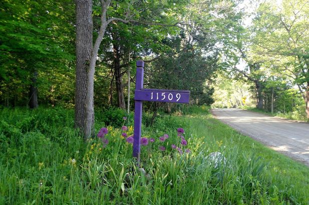 11509 Hall Road - Photo 3