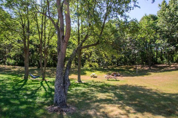 10529 Rolling Oaks Drive - Photo 75