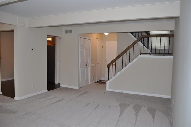 3007 Bolgos Circle - Photo 12
