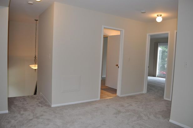 3007 Bolgos Circle - Photo 13