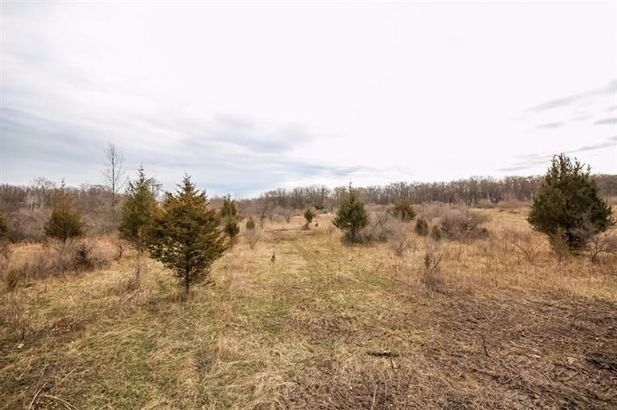 3290 N Lima Center Lot 1 Road - Photo 10