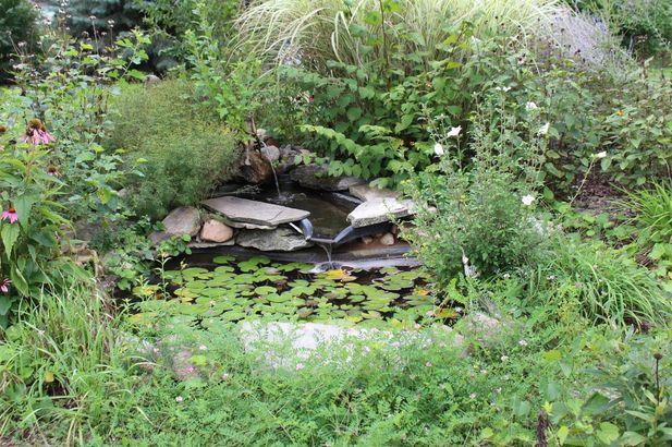 10461 Pauline Drive - Photo 4