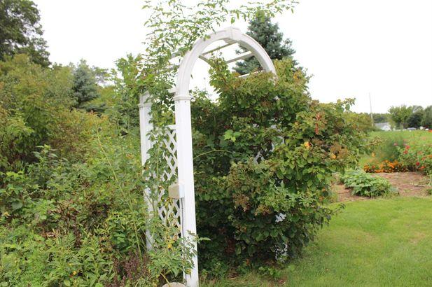 10461 Pauline Drive - Photo 39