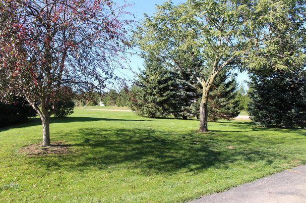 10461 Pauline Drive - Photo 60