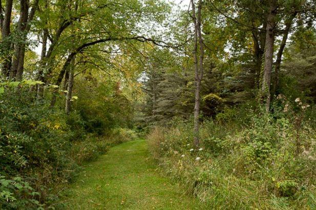 7261 Park Lake Drive - Photo 2