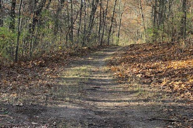 0 Grossman Road - Photo 29