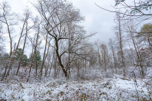 4229 E Cedar Lake - Photo 11