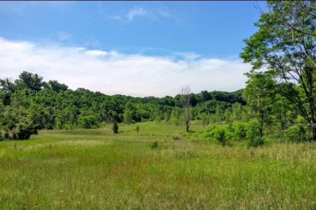 3290 N Lima Center Lot 3 Road - Photo 2