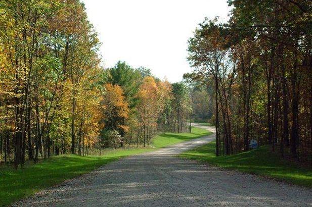 9082 Timber Lane - Photo 3