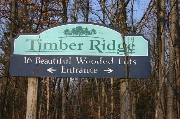9082 Timber Lane - Photo 5