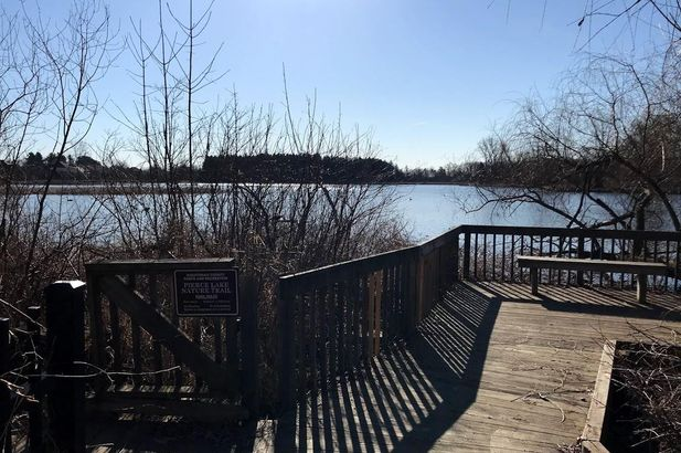 221 Pierce Lake Drive - Photo 46