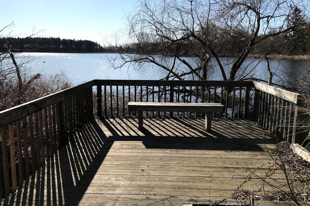 221 Pierce Lake Drive - Photo 9