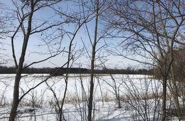0 Nollar Road Whitmore Lake, MI 48189 Photo 3