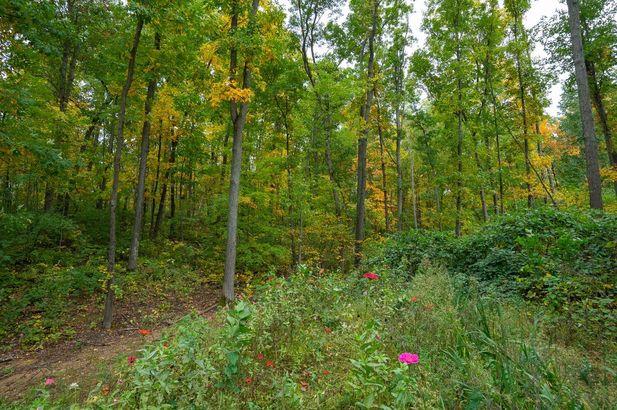 4899 Mt Hope Road - Photo 40