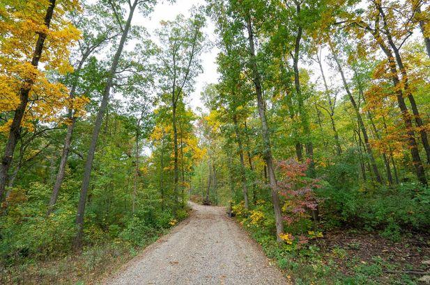4899 Mt Hope Road - Photo 6