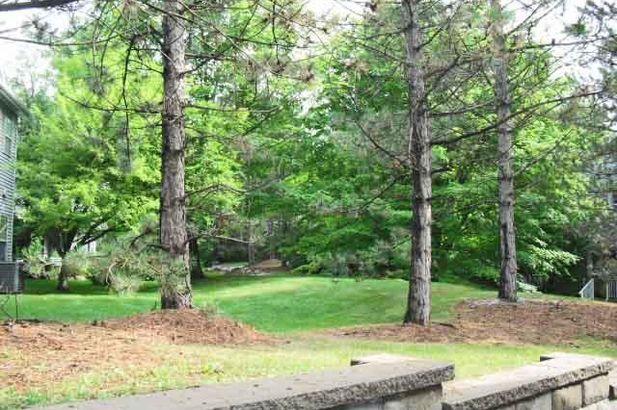 4299 Pine Ridge Court - Photo 20